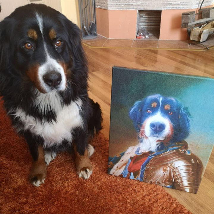 Φотографија на платно Pet Portrait General_2 - 50x60 cm