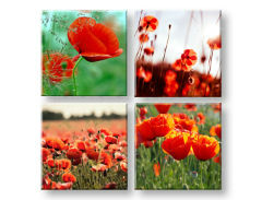 Слики на платно Meadow of poppy poppies 4- делен Колаж XOBKOL17E42